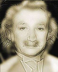 Albert Einstein or Marilyn Monroe